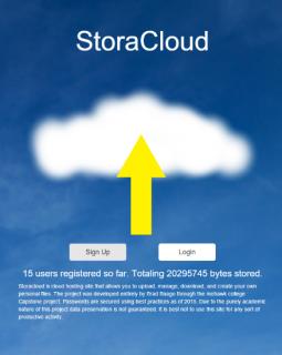Storacloud logo